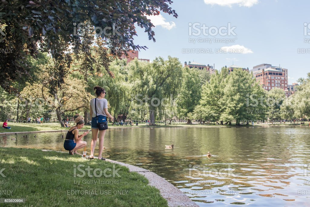 Friends at the pond in Boston Commons in summer stock photo