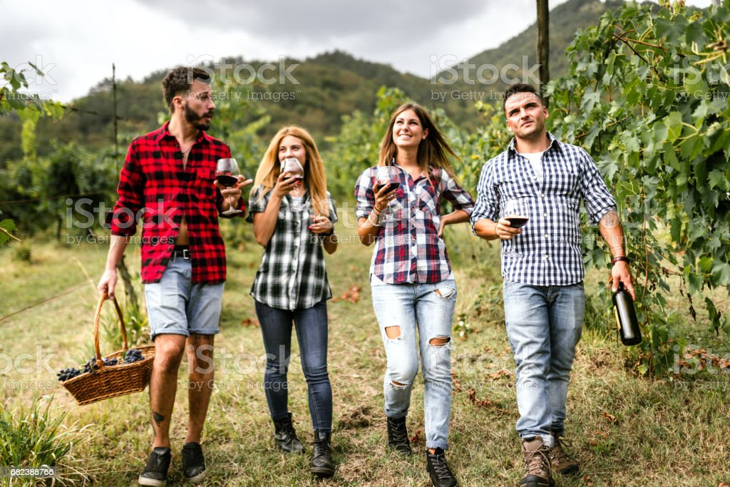 friends do a wine tasting in the vineyard foto stock royalty-free