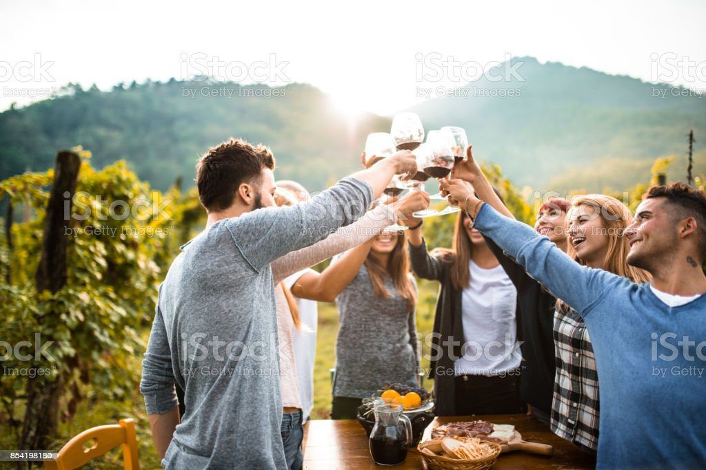 friends doing a wine tasting stock photo