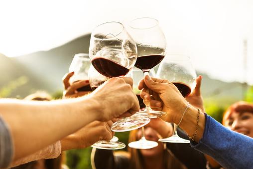 friends doing a wine tasting