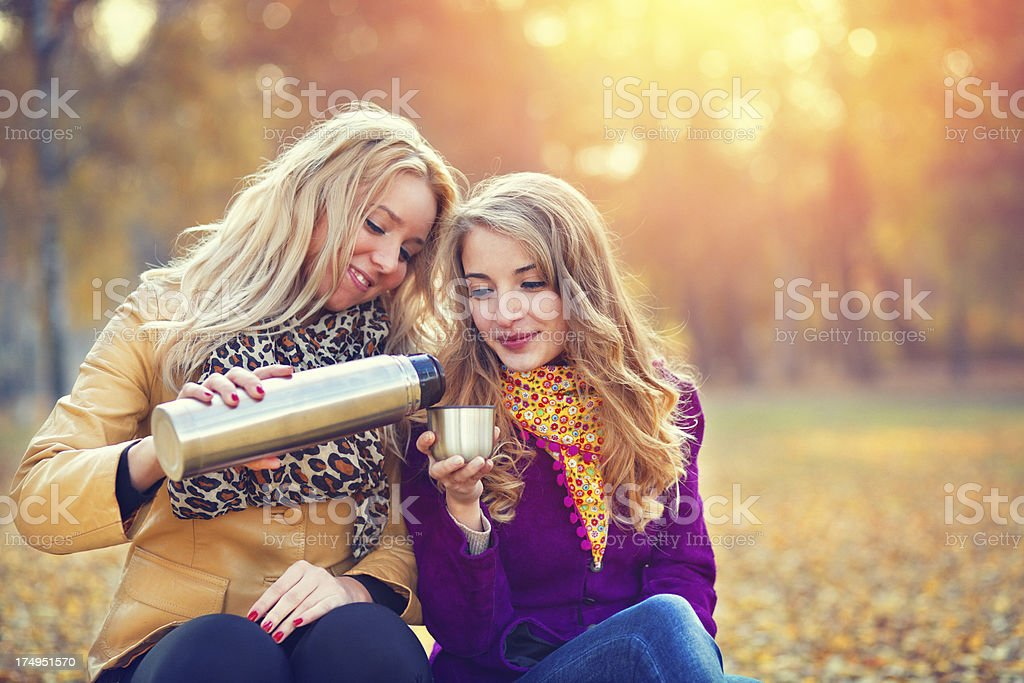 friends drinking tea in the autumn park royalty-free stock photo