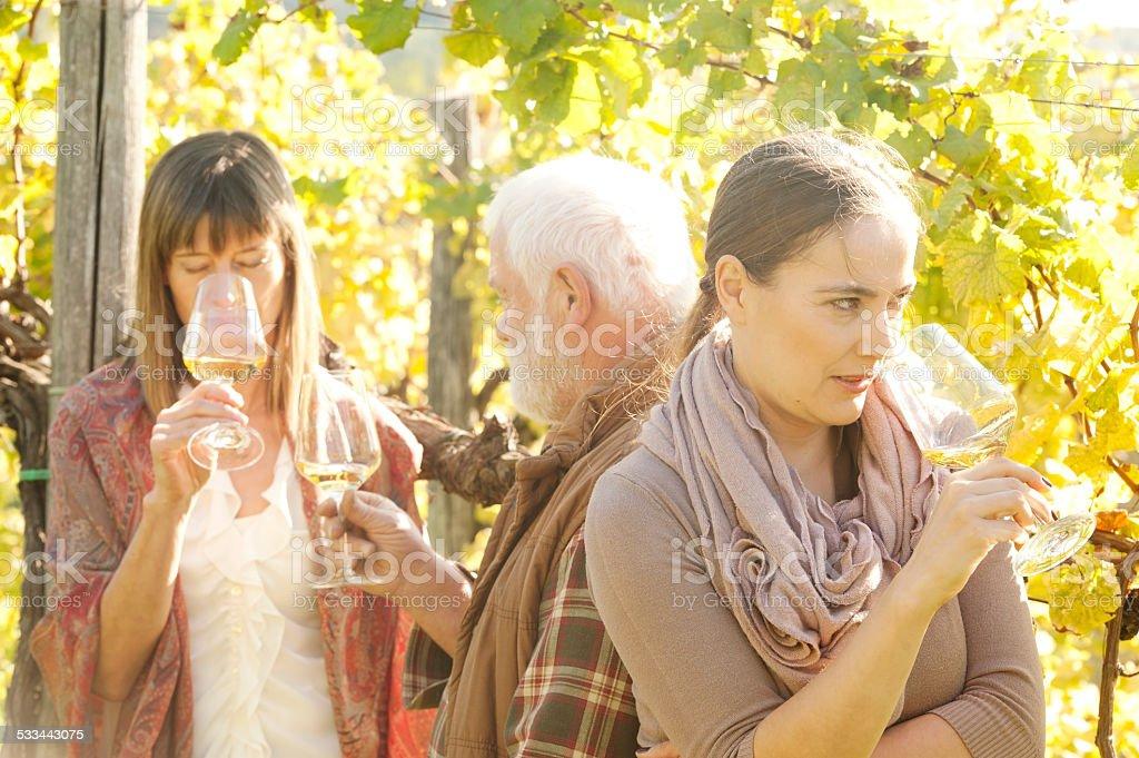Freunde trinken Weißwein auf Weingut Lizenzfreies stock-foto