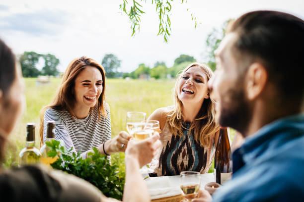 友達を見る飲酒ワイン一緒に屋外昼食 ストックフォト