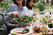Friends enjoying a dinner together in greenhouse harvest party\nPeople dining together healthy salad and nice vegetables