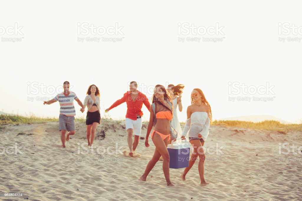 Young people enjoying summer vacations on beach royalty-free stock photo