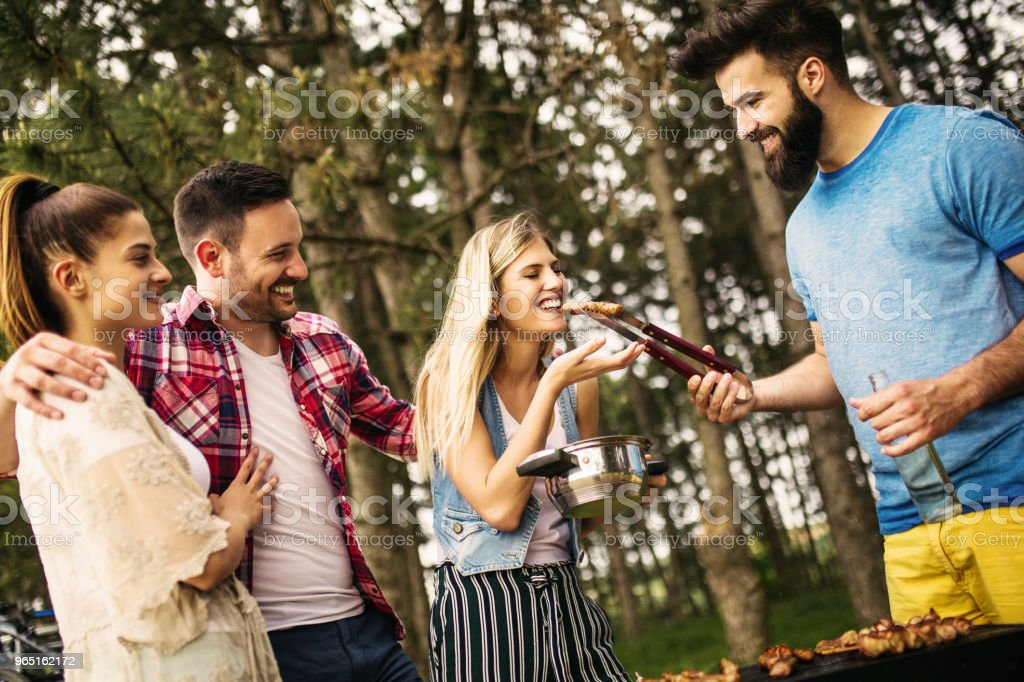 Friends enjoying time on a picnic royalty-free stock photo