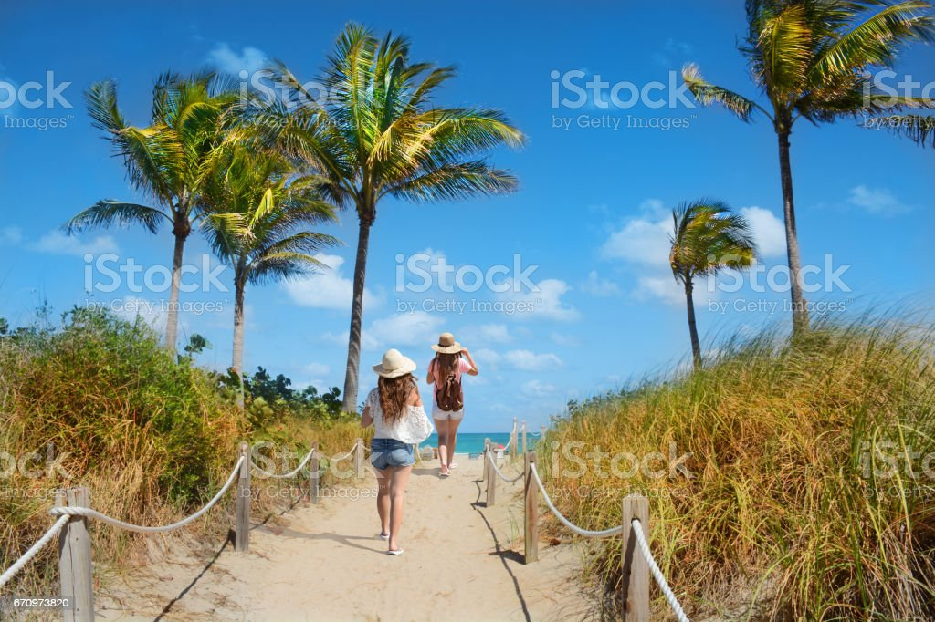 Friends  enjoying time on the beach. stock photo