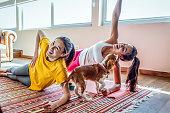犬の会社で自宅で一緒に運動する友人