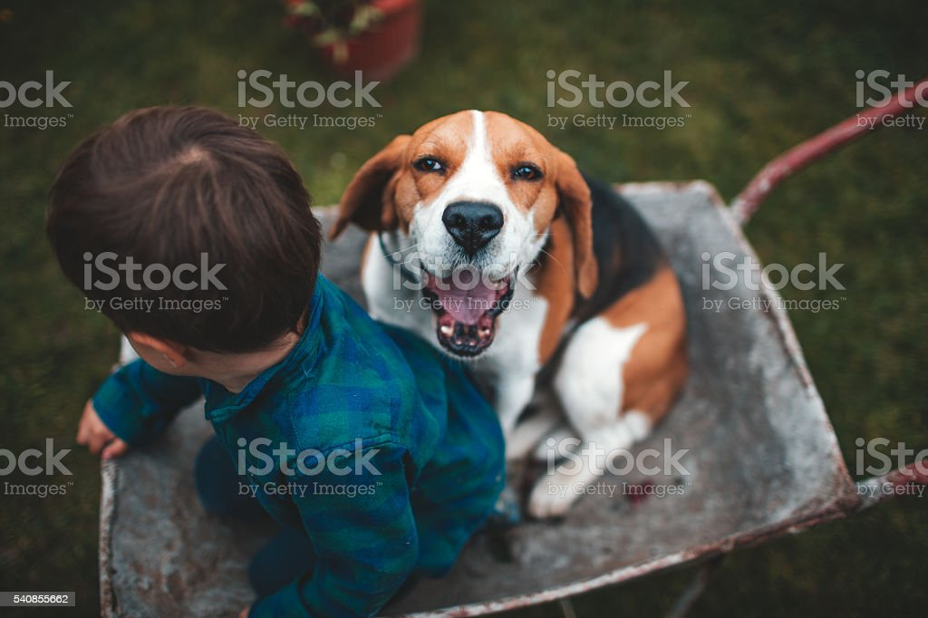Friends for life stock photo
