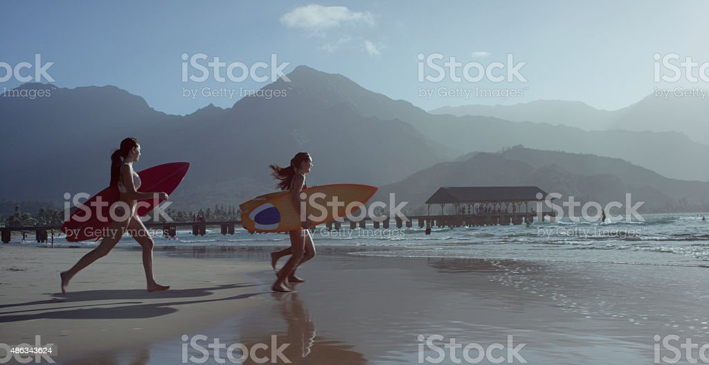 Friends Going Surfing in Hawaii stock photo