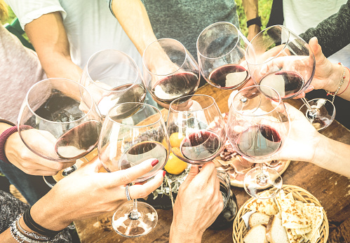 istock Friends hands toasting red wine glass and having fun outdoors cheering with winetasting - Young people enjoying harvest time together at farmhouse vineyard countryside - Youth and friendship concept 685888824