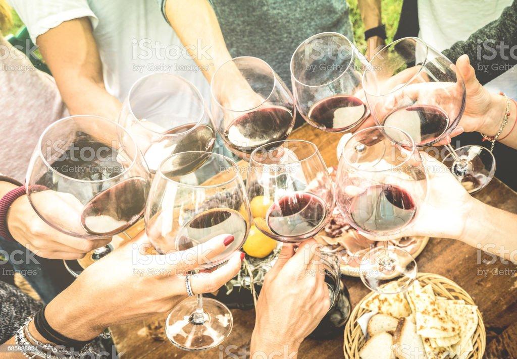 Amigos mãos torrar vermelho vinho vidro e se divertindo ao ar livre, aplaudindo com degustação de vinhos - jovens desfrutando colheita tempo juntos no campo de vinhedo quinta - juventude e amizade conceito - foto de acervo