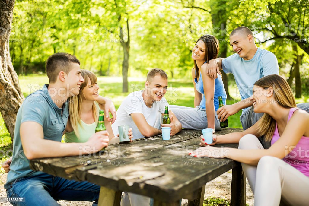 Friends having picnic. royalty-free stock photo
