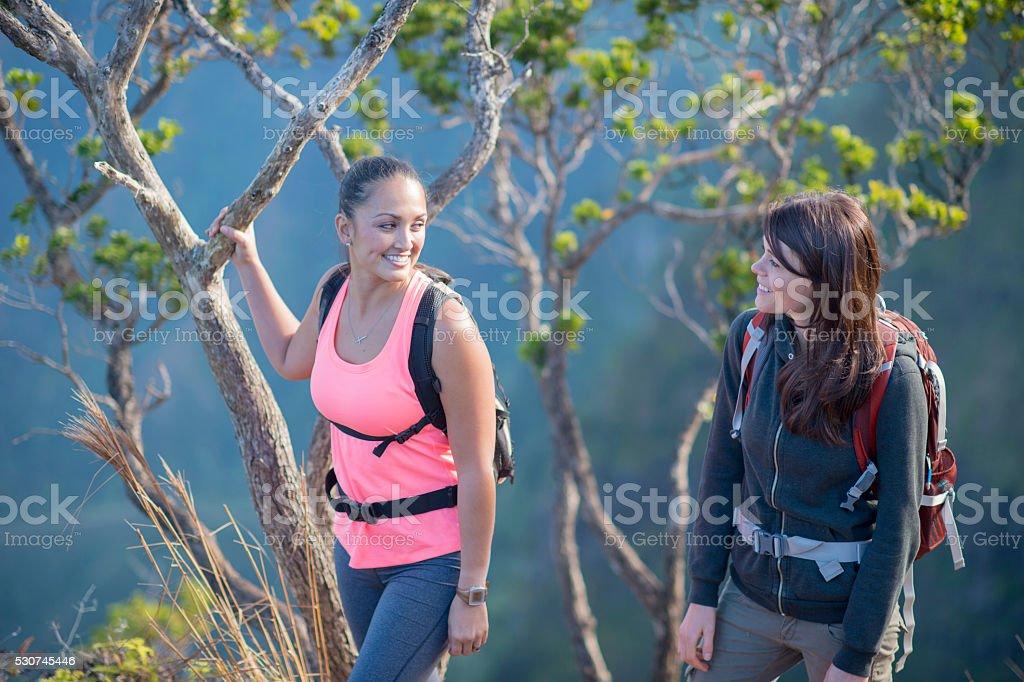 Friends Hiking in Hawaii stock photo