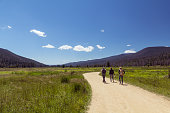 Friends hiking through a meadow in Rocky Mountain National Park, forested mountains in distance