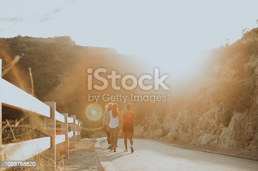 1051098428 istock photo Friends hiking through the hills of Los Angeles 1053768820