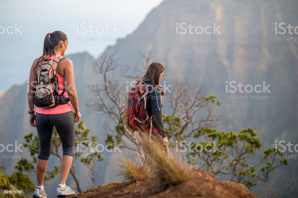 Friends Hiking Together in the Mountains stock photo