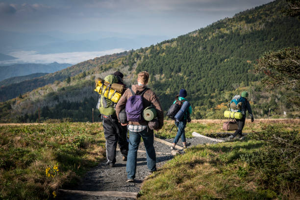 Friends hiking with camping gear on Roan Mountain, Appalachian Trail Four friends, including two men and two women, walk on the Appalachian Trail after breaking camp on Roan Mountain. appalachia stock pictures, royalty-free photos & images