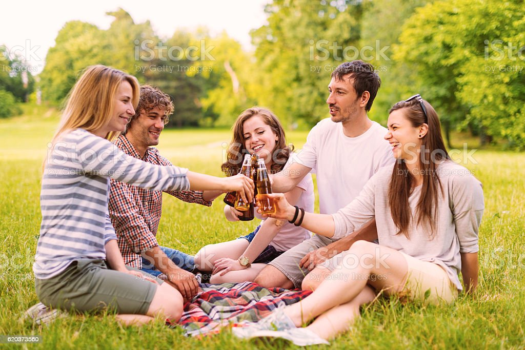 Friends in picnic in summer sitting and drinking together zbiór zdjęć royalty-free