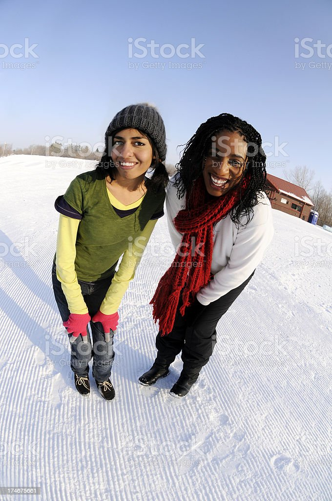Friends in the Snow royalty-free stock photo