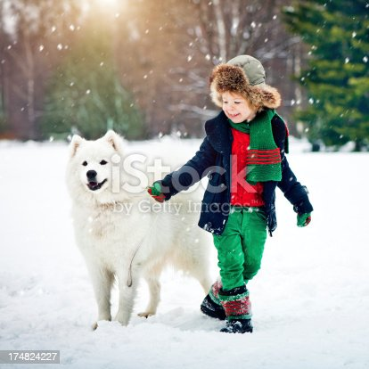 Happy little boy with samoyed dog in winter park
