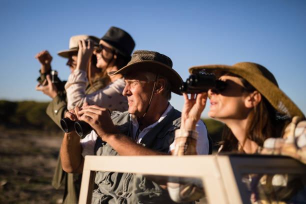 friends looking through binoculars during safari vacation - safari stock photos and pictures