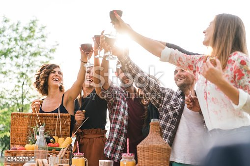 Friends making a toast during a barbecue in the coutryside