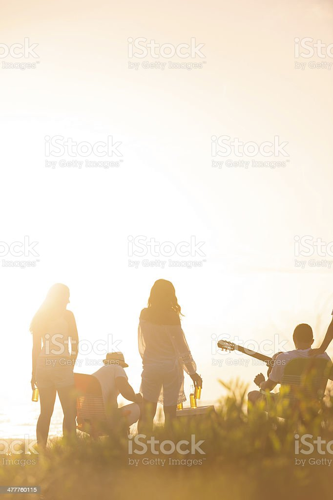 Friends on beach at sunset royalty-free stock photo