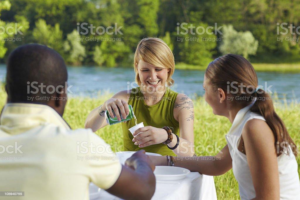 friends picknicking royalty-free stock photo