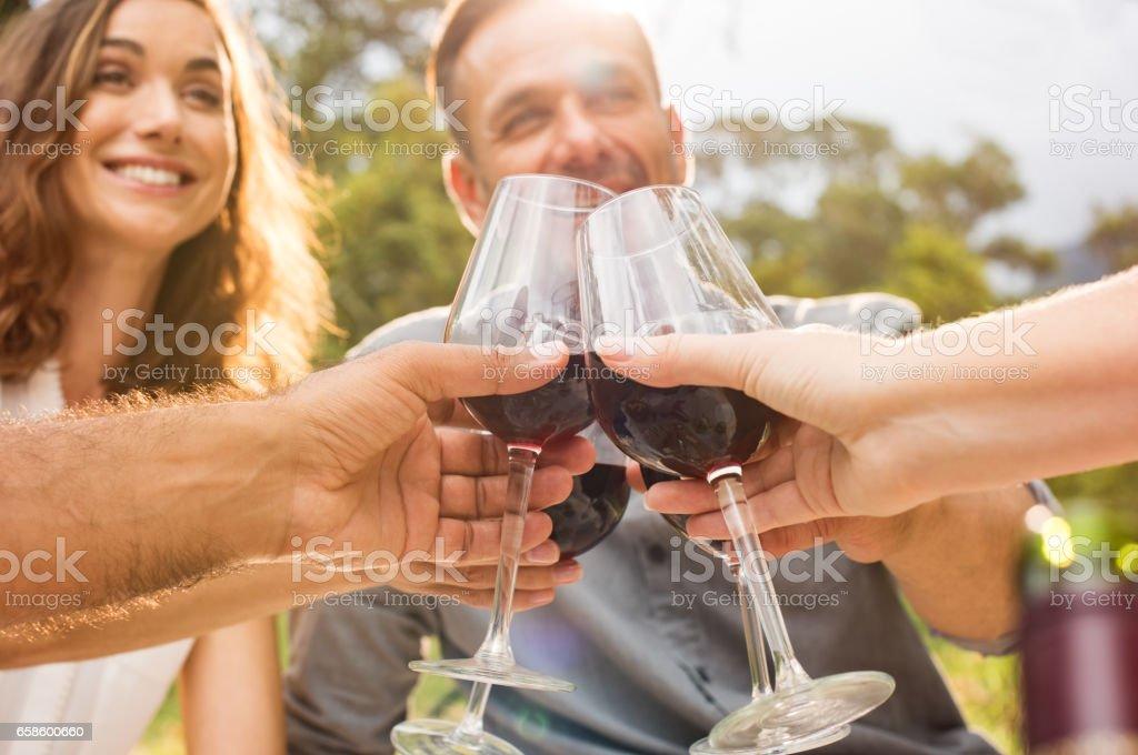 Amigos levantar brindis - foto de stock