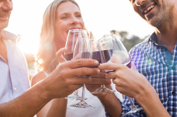 Amigos, levantando o brinde com vinho - foto de acervo