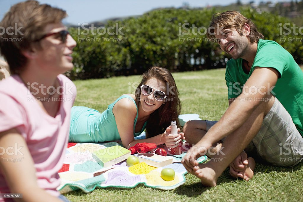 Friends relaxing with books and drinks on blanket in sunny grass royalty-free stock photo