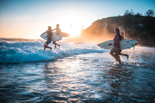Friends running into the ocean with their surfboards Four friends, surfers, running into the water early in the morning with surfboards in their hands. Sun is rising in back. australia stock pictures, royalty-free photos & images