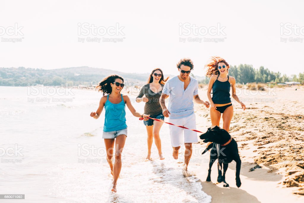 Friends running on the beach with a dog stock photo