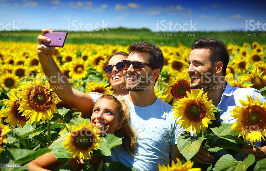 Friends takign selfie in sunflower field. stock photo