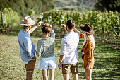 Group of young friends tasting wine on the vineyard, looking on the wine glasses on a sunny summer morning, view from the backside