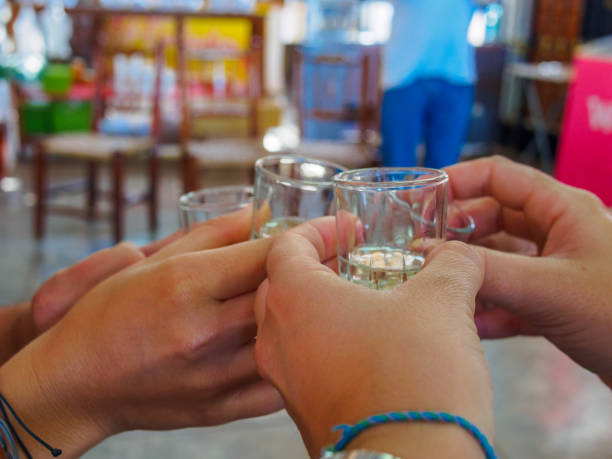 Friends toast and tasting of pisco in vineyard of Ica, Peru Young adults toast with pisco in a visit of a pisco factory, in Peru. It's an obligated stop for tourists. There are many types of pisco. pisco peru stock pictures, royalty-free photos & images