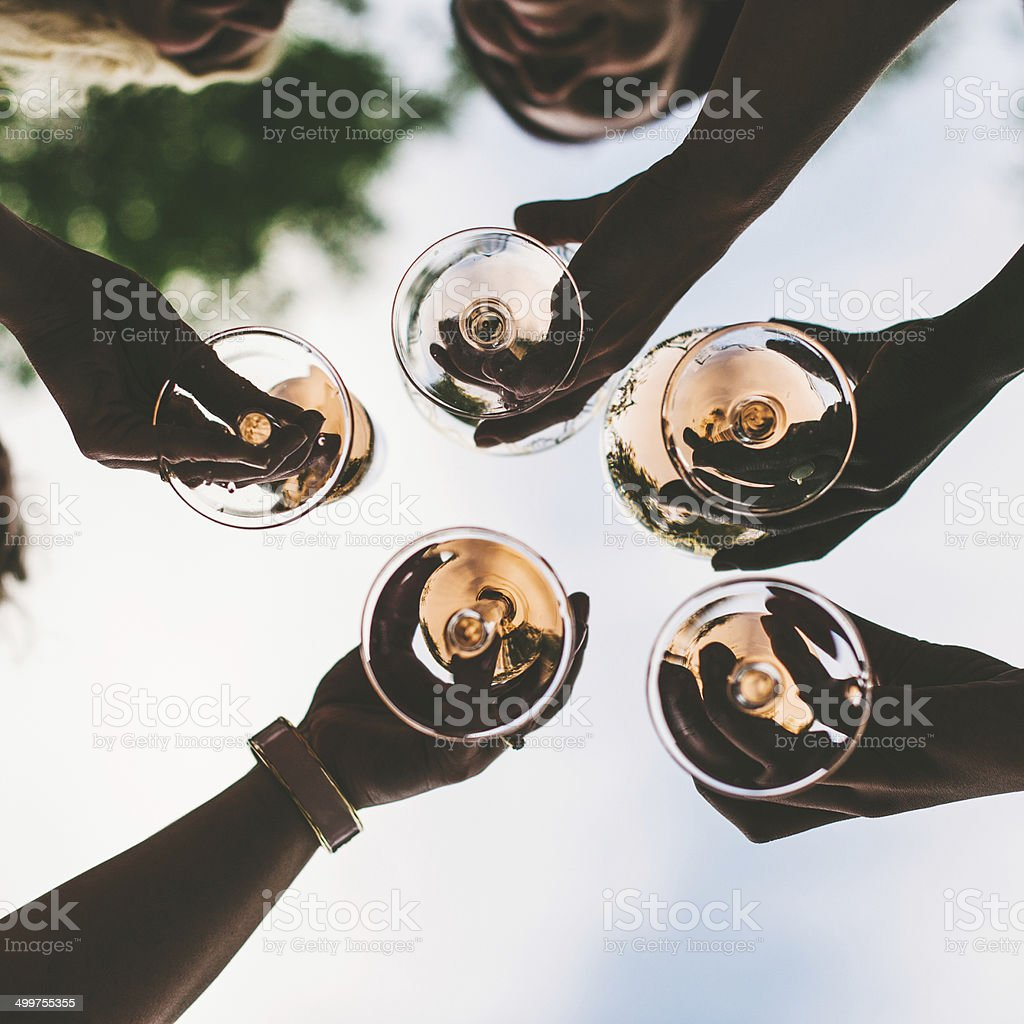 Friends toasting at a party stock photo