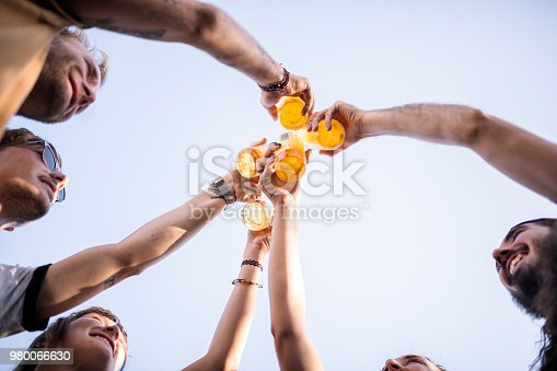 Directly below shot of friends toasting beer bottles. Happy men and women are celebrating against sky. They are enjoying during social gathering.