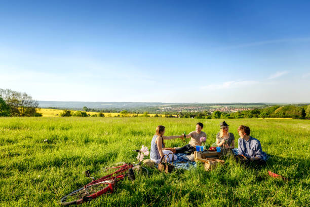 Friends toasting bottles and having a picnic on field stock photo