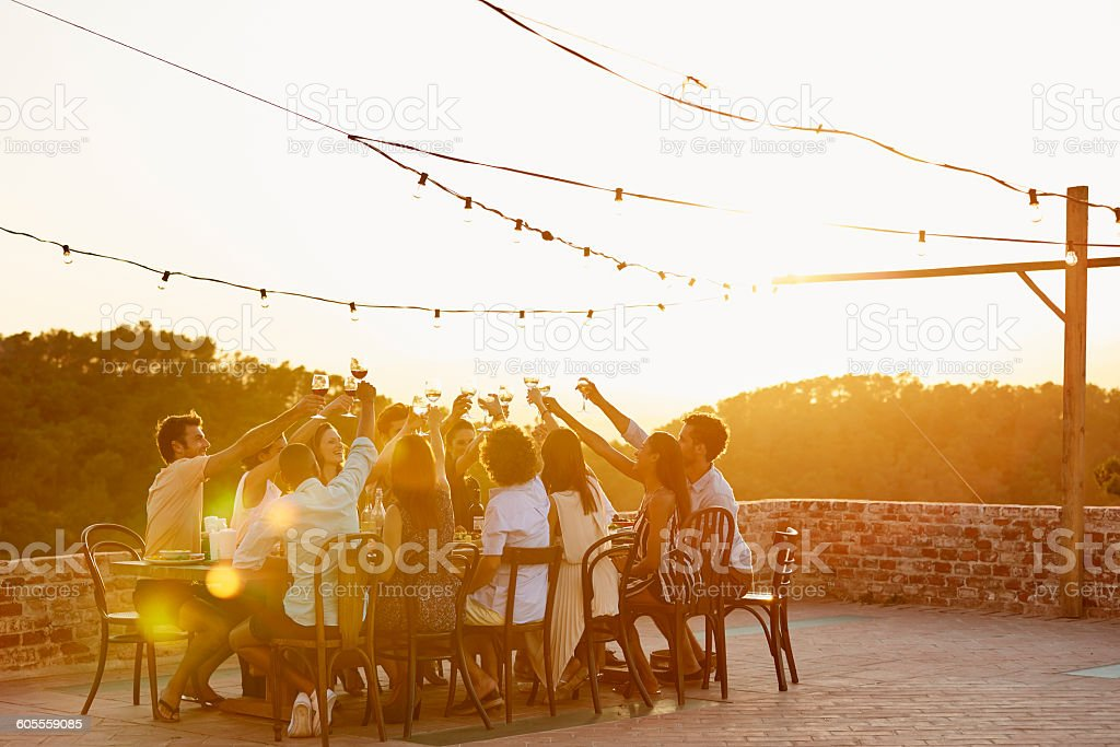 Friends toasting drinks during social gathering - foto de acervo