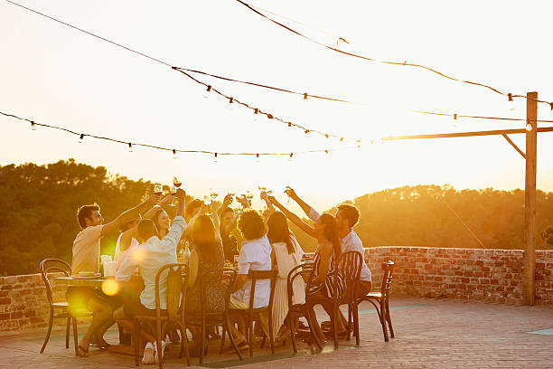 Friends toasting drinks during social gathering - foto de acervo