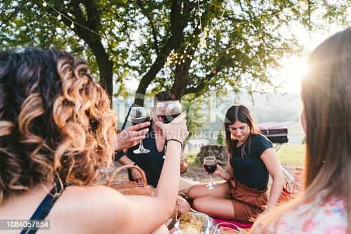 Friends toasting during a picnic at sunset in the countryside. medium group of millennials people under a tree.