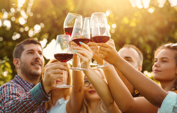 Friends toasting red wine glasses with sun flare - Friendship concept stock photo