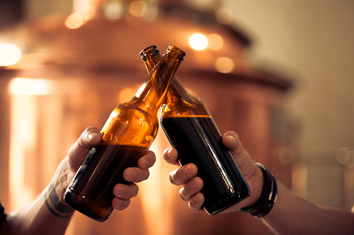 Friends toasting with beer bottles in the microbrewery