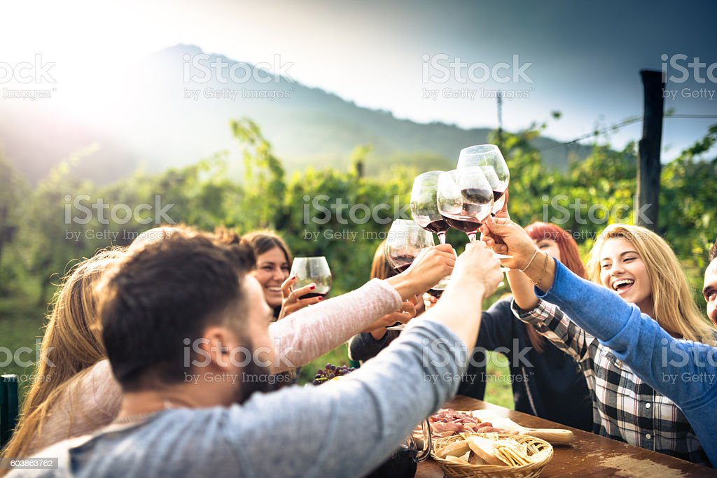 friends toasting with red wine after the harvesting - foto de stock