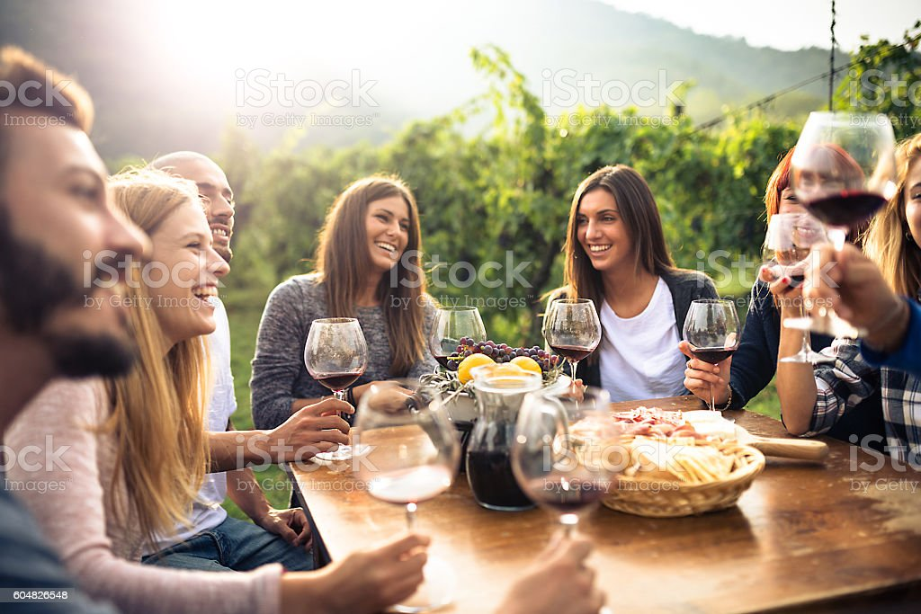 friends toasting with red wine after the harvesting - 25-29歳のロイヤリティフリーストックフォト