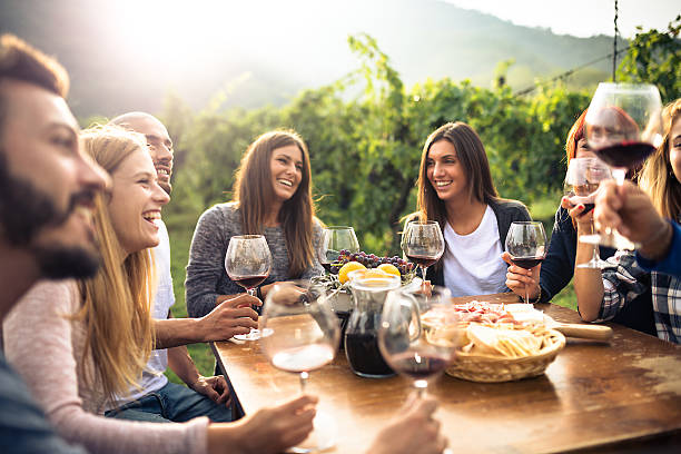 friends toasting with red wine after the harvesting - couple lap stock photos and pictures