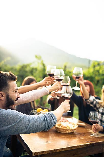 friends toasting with red wine after the harvesting - italienische lebensart stock-fotos und bilder
