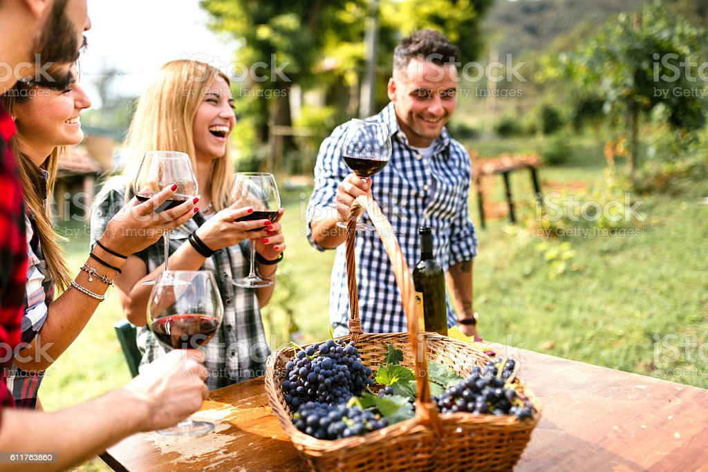 friends toasting with red wine after the harvesting - Photo